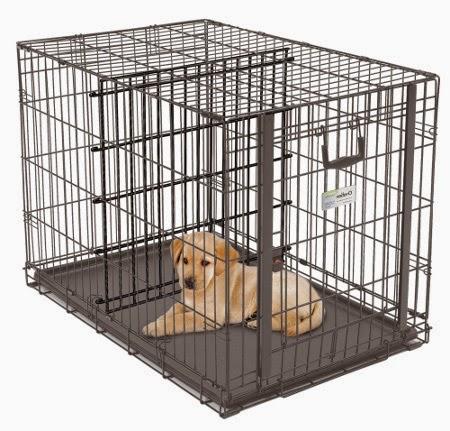 Jaką klatkę wybrać dla psa?