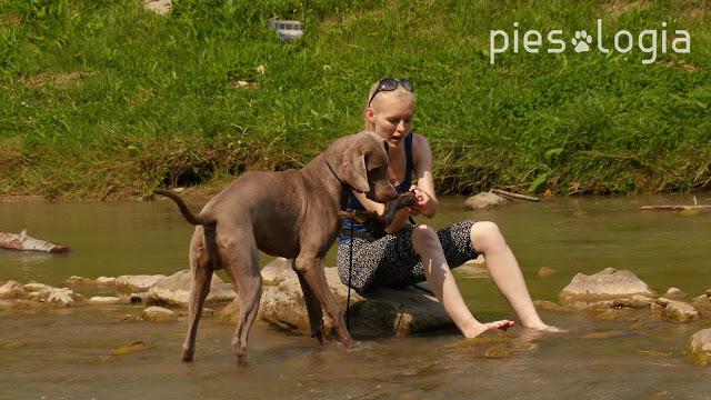 Gorce z psem