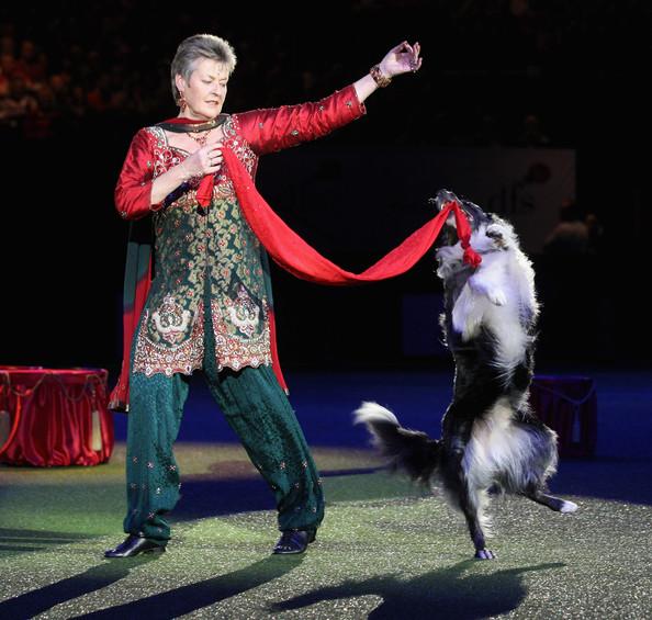 Psie sporty - Taniec z psem