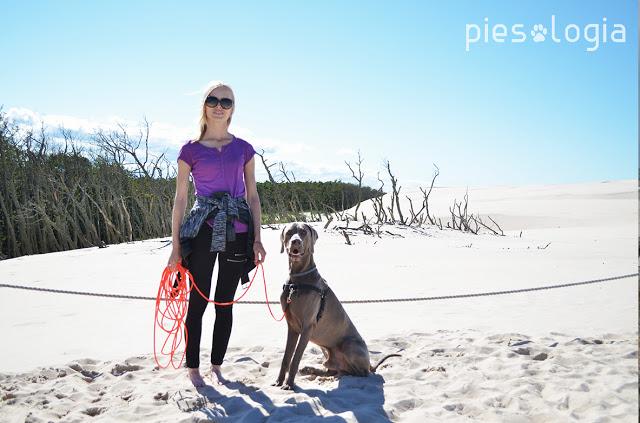 Wakacje z psem Dębki - Piesologia