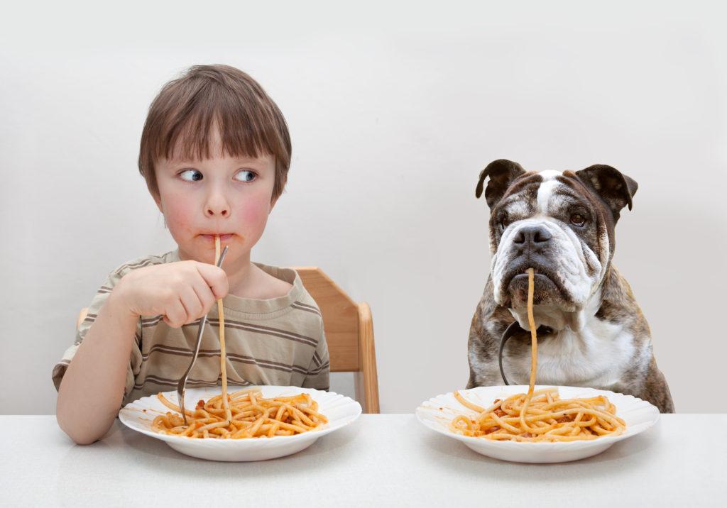 Podstawowe potrzeby psa