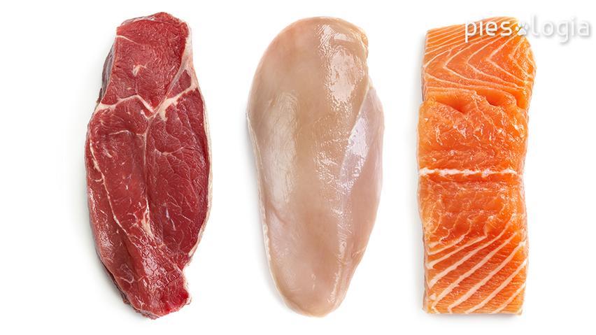 Mięso dieta BARF - jak skomponować dietę BARF